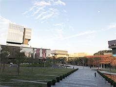 香港中文大學(深圳)
