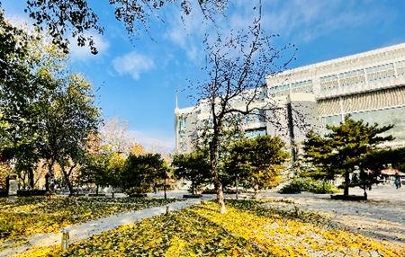 """北京航空航天大学2021年""""宏志计划"""" (高校专项计划)招生简章"""
